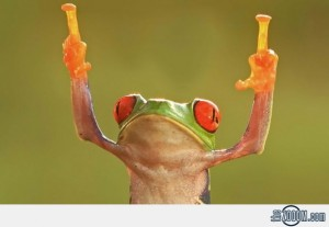 Frog-Middle-Fingers
